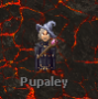 rol:pupaleyingame.png